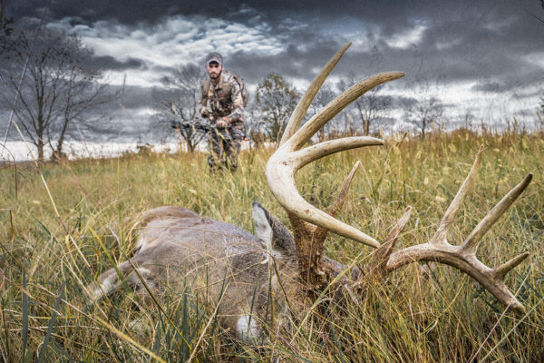 Whitetail Deer Down with Bowhunter